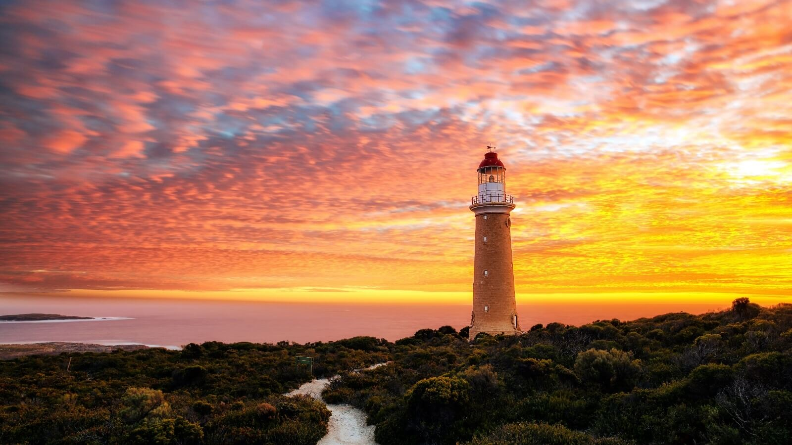 Kangaroo Island Solo Travel Tour