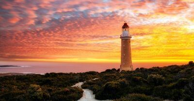Solo Travel Tours Kangaroo Island