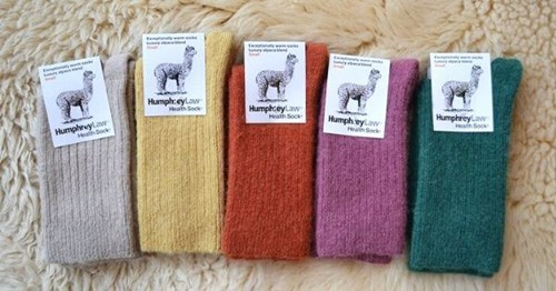 Buy Australian Made Socks