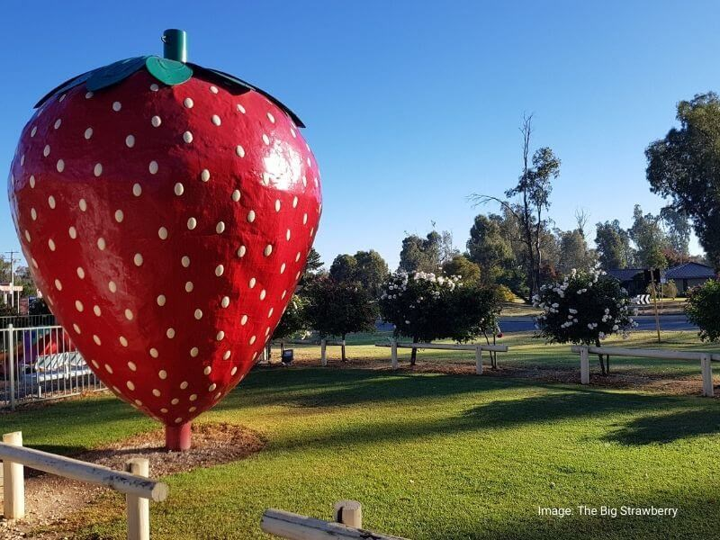 The Big Strawberry VIC